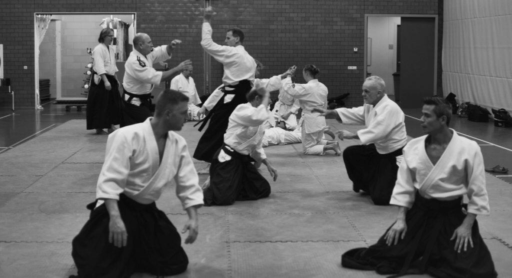 Aikido in Heerenveen