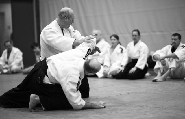 Activiteiten van Aikido Friesland, een gastles van Marc Jongsten in Heerenveen